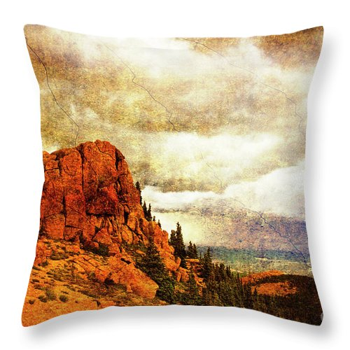 Storm Throw Pillow featuring the photograph Standing Against The Storm by Scott Pellegrin