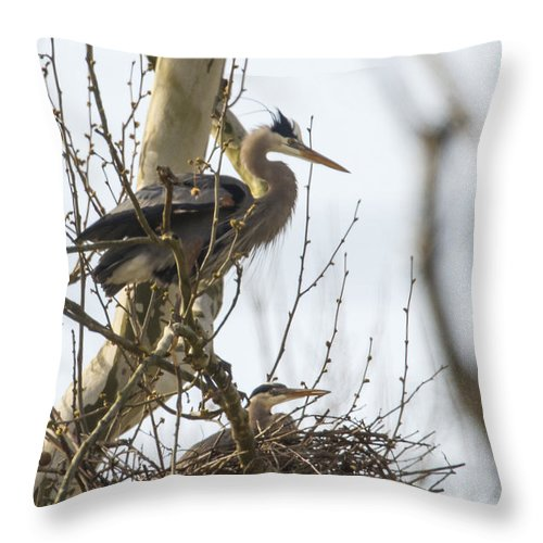 Ardea Throw Pillow featuring the photograph Standing Watch by Jack R Perry