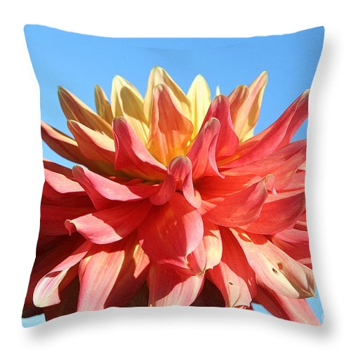 Flower Throw Pillow featuring the photograph Sunny Center by Susan Herber
