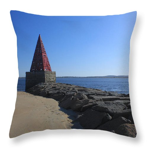 Toothpick Throw Pillow featuring the photograph Toothpick by K Hines