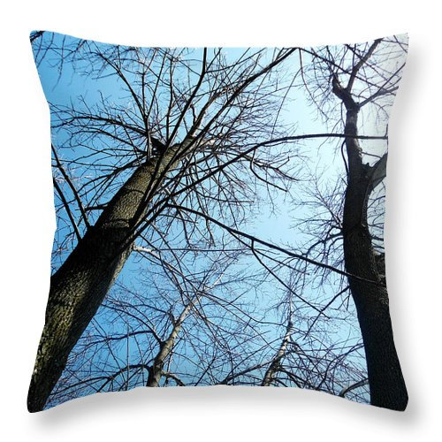 Trees Throw Pillow featuring the photograph 2 Trees by Chloe Shackelton