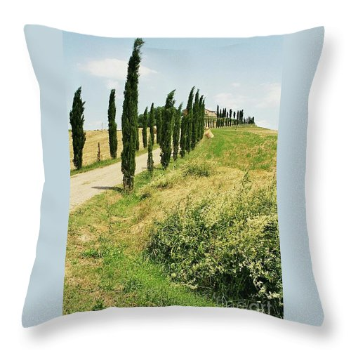 Cypress Throw Pillow featuring the photograph Tuscany Landscape by Christiane Schulze Art And Photography