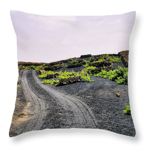 Vineyard Throw Pillow featuring the photograph Vineyard On Lanzarote by Karol Kozlowski