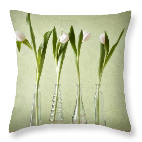Tulpen Throw Pillow featuring the pyrography Waiting For Spring by Steffen Gierok