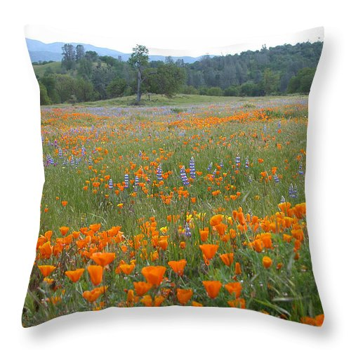 Wildflowers Throw Pillow featuring the photograph Wildflower Wonderland 10 by Lynn Bauer