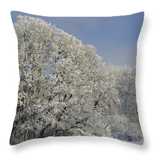 America Throw Pillow featuring the photograph Winter In Oregon by John Shaw