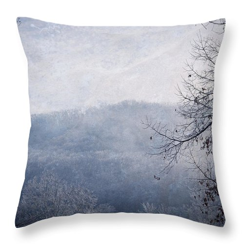 Ice Storm Throw Pillow featuring the photograph Winter Landscape by Melinda Fawver