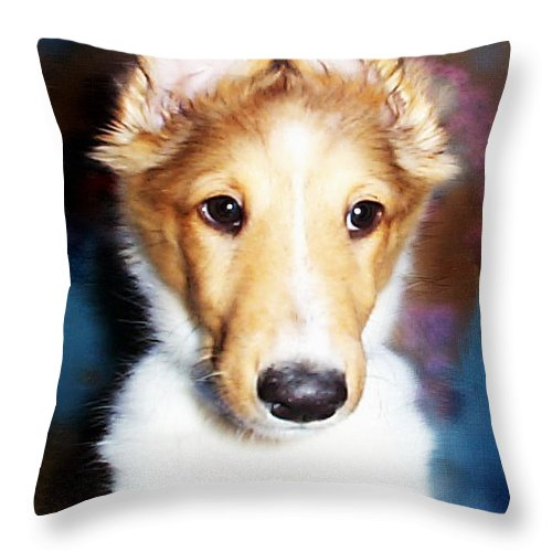 Photography Throw Pillow featuring the photograph Wonky Reception by Paula Ayers