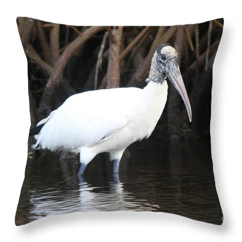 Wood Stork Throw Pillow featuring the photograph Wood Stork In The Swamp by Christiane Schulze Art And Photography