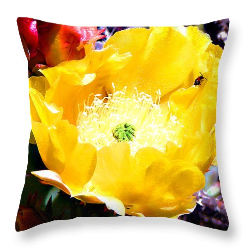 Botanical Throw Pillow featuring the photograph Yellow Cactus Flower by Linda Cox