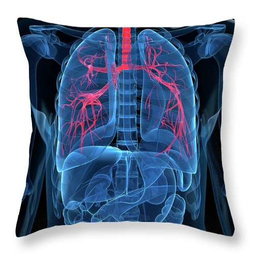 Human Lung Throw Pillow featuring the digital art Human Lungs, Artwork by Sciepro