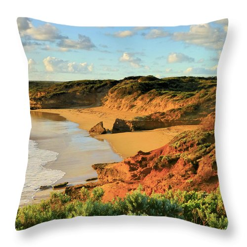 Landscape Throw Pillow featuring the photograph Landscape by Girish J