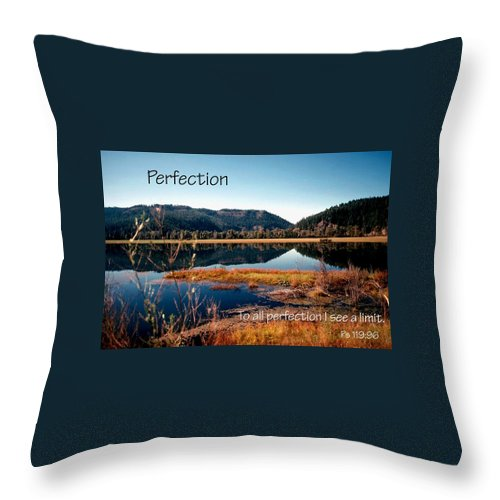Faith Throw Pillow featuring the photograph 21042 Perfection 2 by Jerry Sodorff