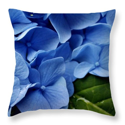 Throw Pillow featuring the photograph Spring 2013 by Chet B Simpson