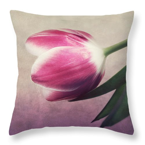 Still Life Throw Pillow featuring the photograph Still Life by Heike Hultsch