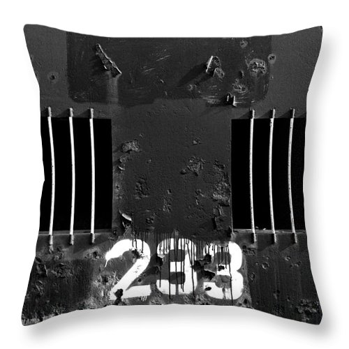 Photo Decor Throw Pillow featuring the photograph 233 by Steven Huszar