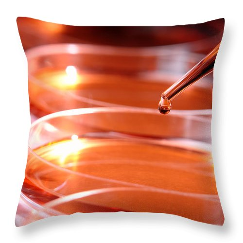 Bacteria Throw Pillow featuring the photograph Laboratory Experiment In Science Research Lab by Science Research Lab By Olivier Le Queinec