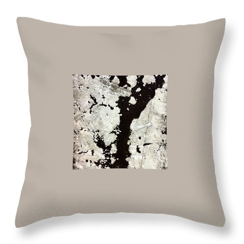 Beautiful Throw Pillow featuring the photograph Post 2 by J Love
