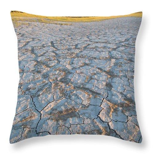 Alvord Desert Throw Pillow featuring the photograph Alvord Desert, Oregon by John Shaw