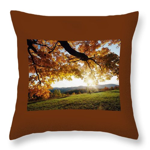 Irish Flowers Throw Pillow featuring the photograph Sunset With An Abstract Twist by Dave Byrne