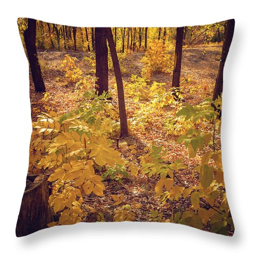 Autumn Throw Pillow featuring the photograph Autumn by Svetlana Sewell