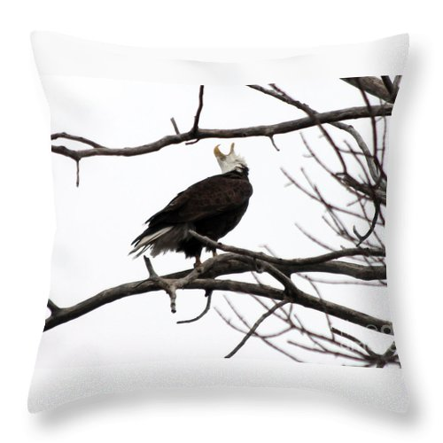 Eagle Throw Pillow featuring the photograph Call Of The Wild by Lori Tordsen