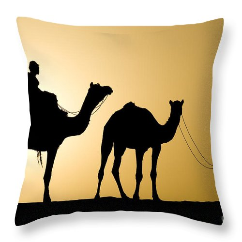 Asia Throw Pillow featuring the photograph Camel Caravan, India by John Shaw