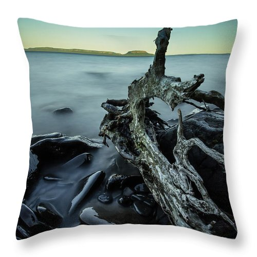 Blue Hour Throw Pillow featuring the photograph Driftwood by Jakub Sisak