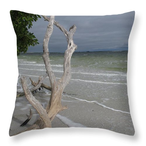 Beach Throw Pillow featuring the photograph Driftwood On The Beach by Christiane Schulze Art And Photography