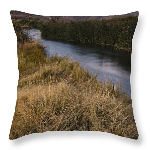 Mountain Throw Pillow featuring the photograph Eastern Sierras And Owens River by John Shaw