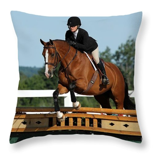 Equestrian Throw Pillow featuring the photograph Hunter6 by Janice Byer