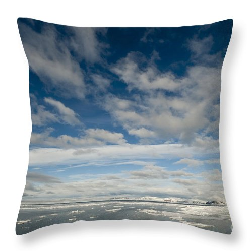 Arctic Throw Pillow featuring the photograph Ice Floes, Spitsbergen by John Shaw