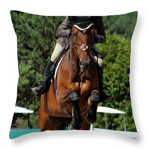 Equestrian Throw Pillow featuring the photograph Jumper29 by Janice Byer