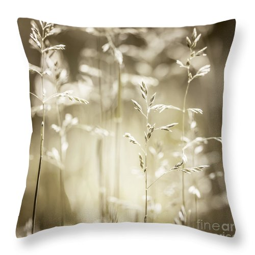 Grass Throw Pillow featuring the photograph June Grass Flowering by Elena Elisseeva