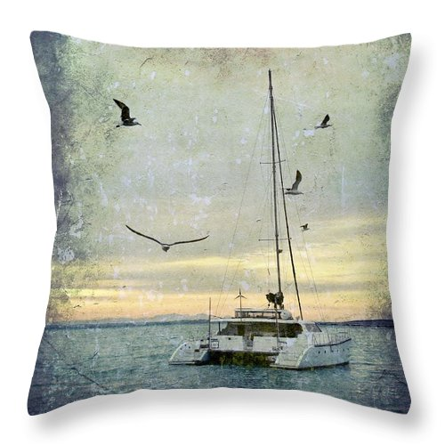 Seascape; Catamaran; Seagulls; Morning Light; St. Helena Bay; South Africa; Sky; Blue; Waves; Sea Birds; White; Boat; Texture; Photoshop; Throw Pillow featuring the photograph Let's Go by Werner Lehmann