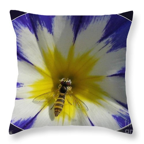 Mccombie Throw Pillow featuring the painting Morning Glory Named Royal Ensign by J McCombie