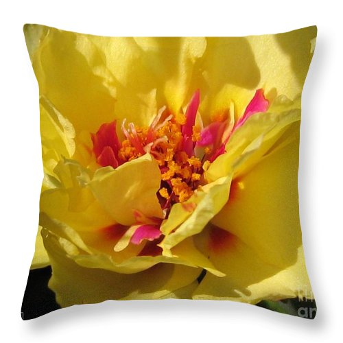 Mccombie Throw Pillow featuring the photograph Portulaca Named Happy Hour Banana by J McCombie
