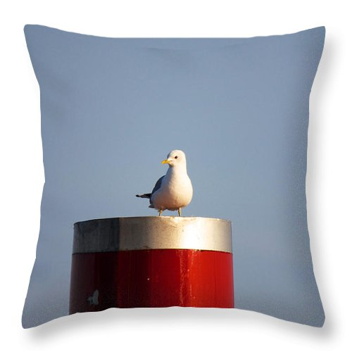 Afternoon Throw Pillow featuring the photograph Seagull Perched On Red Column by Jannis Werner