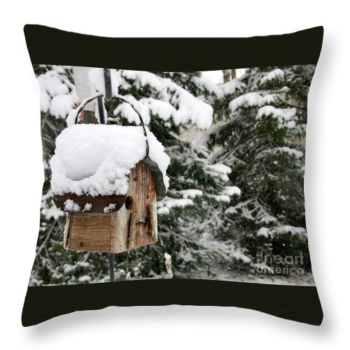 Snow Throw Pillow featuring the photograph Snow Day by Krista Kulas