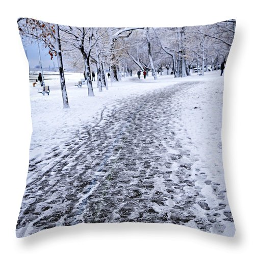 Winter Throw Pillow featuring the photograph Winter Park by Elena Elisseeva