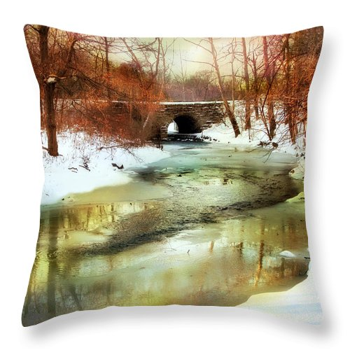 Winter Throw Pillow featuring the photograph Winter Waters by Jessica Jenney
