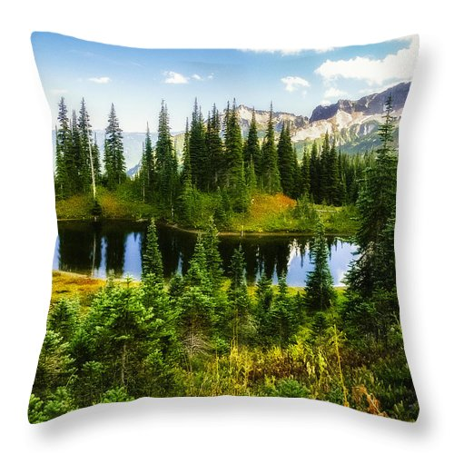 Cascades Throw Pillow featuring the photograph 30920-55 Trailside Lake by Albert Seger
