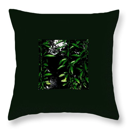 Beautiful Throw Pillow featuring the photograph Foliage by J Love