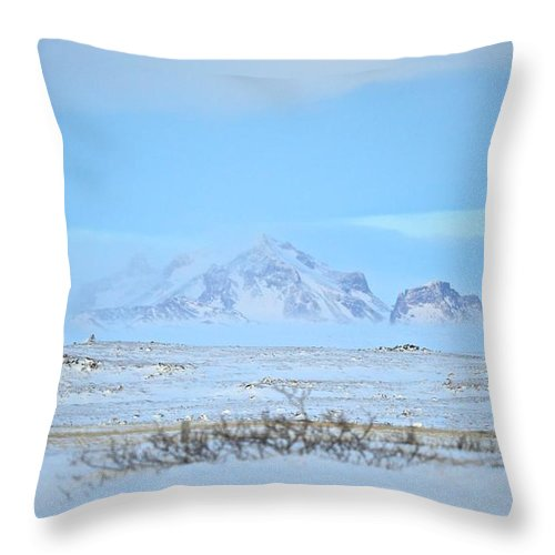 Landscape Throw Pillow featuring the photograph Untitled by Eric Reger