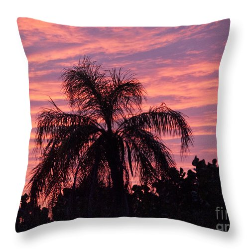 Tropic Throw Pillow featuring the photograph Florida Sunset by Allan Hughes