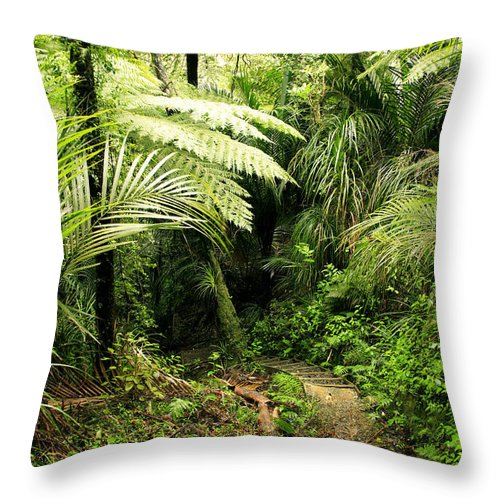 Jungle Throw Pillow featuring the photograph Forest No1 by Les Cunliffe