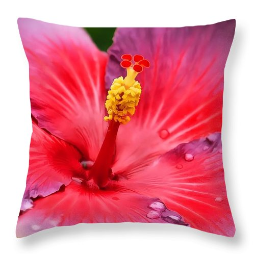 Hibiscus Throw Pillow featuring the photograph Hibiscus by Joyce Baldassarre