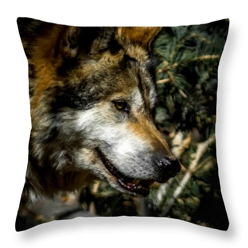 Wolf Throw Pillow featuring the digital art Mexican Grey Wolf by Ernie Echols