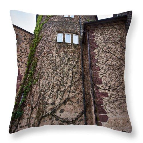 Alankomaat Throw Pillow featuring the photograph Sababurg by Jouko Lehto