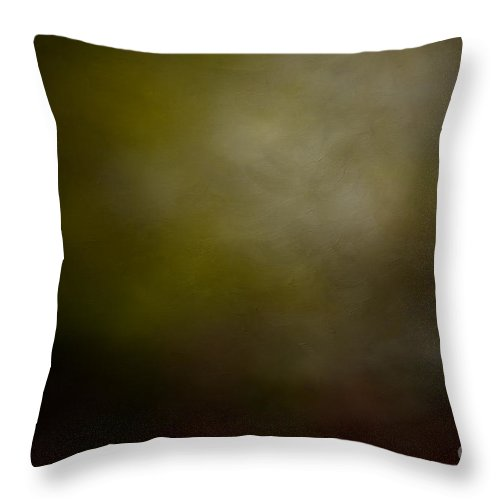 Asheville Throw Pillow featuring the photograph Untitled by Doug Sturgess